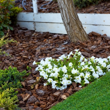 landscaping-4_1