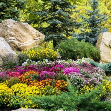 landscaping-5_1